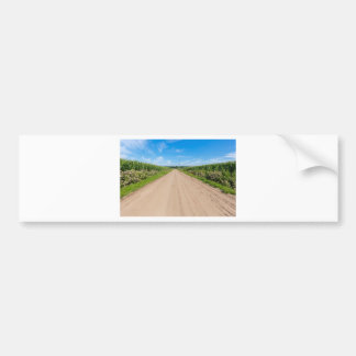 Countryside with sandy road and corn fields bumper sticker