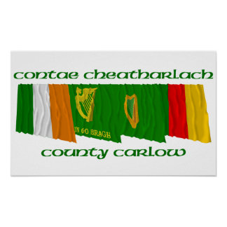 County Carlow Flags Poster