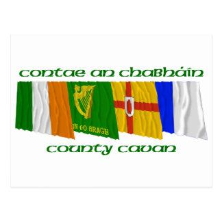 County Cavan Flags Postcard