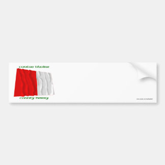 County Derry Colours Bumper Sticker