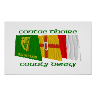 County Derry Flags Poster