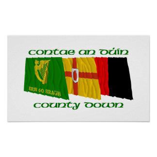 County Down Flags Poster