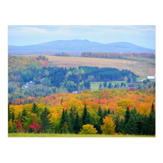 County Farmland Postcard