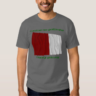 County Galway Colours T Shirt