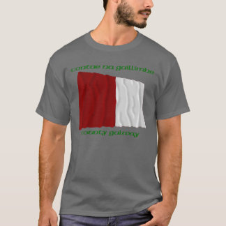 County Galway Colours T-Shirt