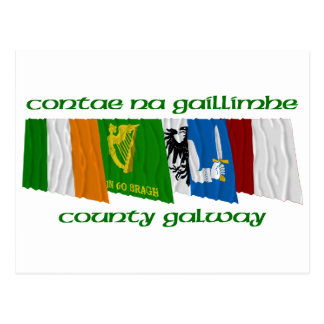 County Galway Flags Postcard
