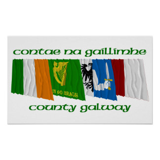 County Galway Flags Poster
