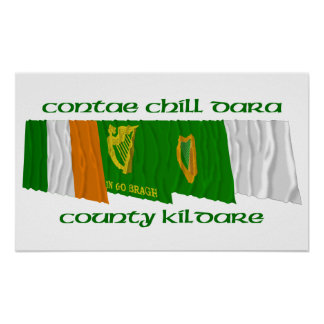County Kildare Flags Poster