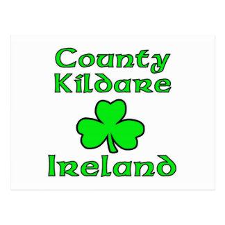 County Kildare, Ireland Postcard