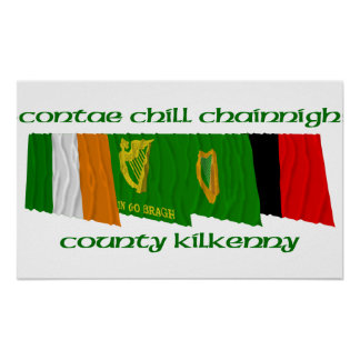 County Kilkenny Flags Poster