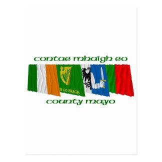 County Mayo Flags Postcard