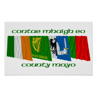 County Mayo Flags Poster