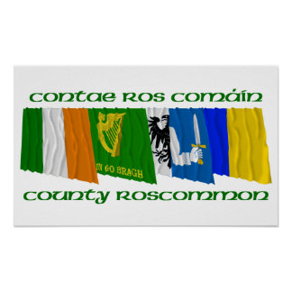 County Roscommon Flags Poster