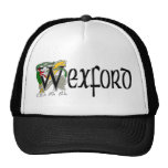 County Wexford Cap Mesh Hat