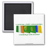County Wicklow Flags Fridge Magnets
