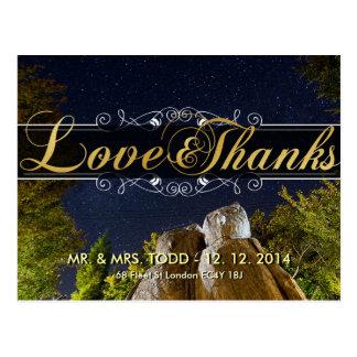 Coupl Owls under Milky Way Thanks Wedding Postcard