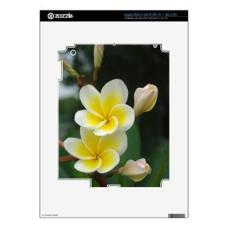 Couple Frangipani Decal For iPad 3