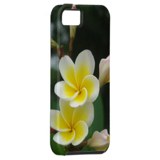 Couple Frangipani iPhone 5 Case