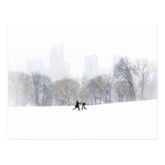 Couple in Sheep Meadow, Central Park Postcard