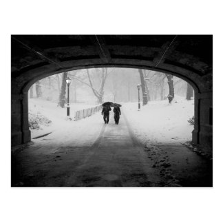 Couple in Snowstorm Central Park Postcards