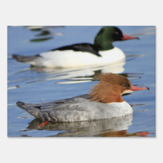 Couple of goosander ducks yard sign