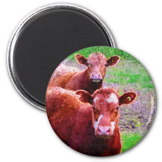 Couple of Old Cows Magnet
