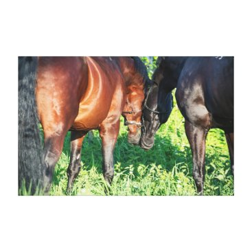 Beach Themed couple of sportive  horses. canvas print