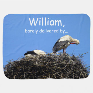 Couple of Storks Sitting in a Nest Receiving Blanket