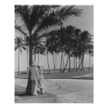 Couple Standing Under Tree Poster