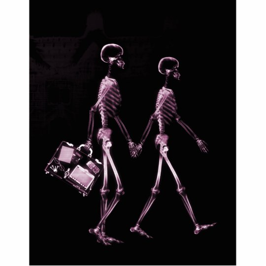 Couple Traveling X-Ray Vision Skeletons - Pink Cutout