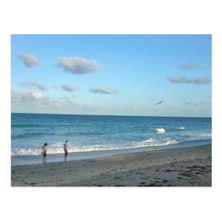 Couple walking on florida beach w seagull postcard