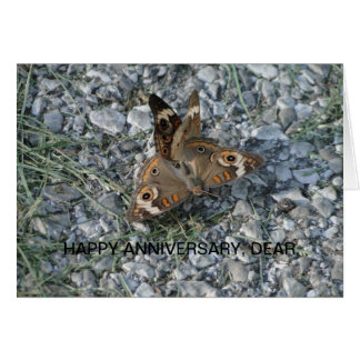 Coupled Buckeye Butterflies Card