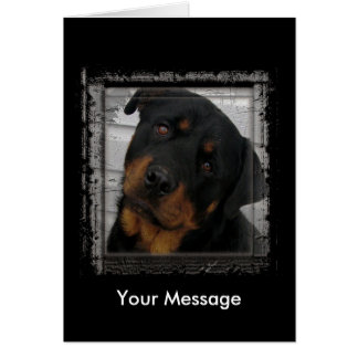 Courage Animal Notecards Card