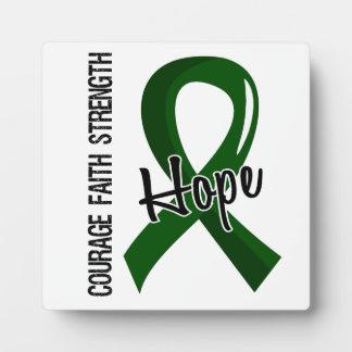 Courage Faith Hope 5 Liver Disease Plaque