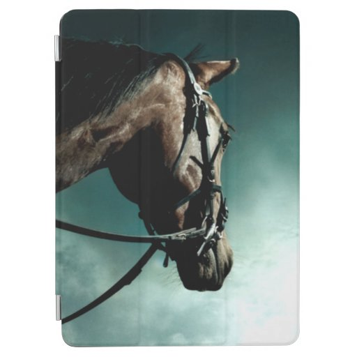 Courage iPad Air Cover
