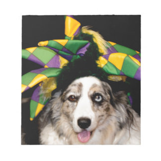 Court Jester Cardigan Welsh Corgi Note Pads