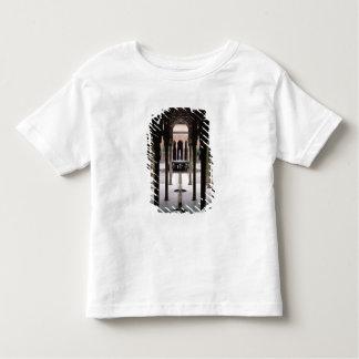 Court of Lions begun during reign of Mohammed V Toddler T-shirt