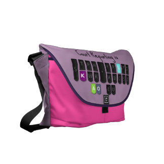 Court Reporting is Cool Steno Keyboard Bag