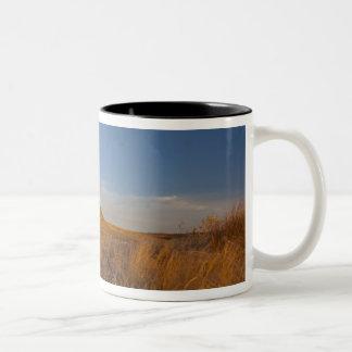 Courthouse and Jailhouse Rock near Bridgeport Two-Tone Coffee Mug