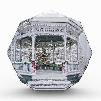 Courthouse Gazebo in the Snow Award