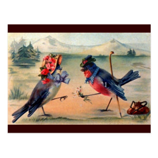 Courtship of Birds Post Cards
