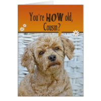 Poodle birthday cards greeting photo cards zazzle poodle birthday cards cousins birthday bookmarktalkfo Gallery