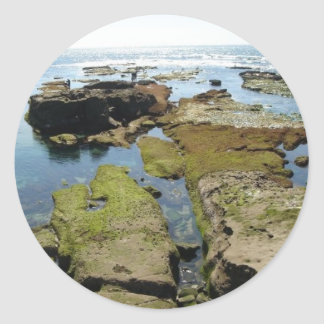 Cove at Low Tide Sticker