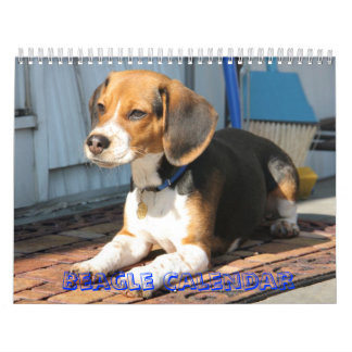 cover, Beagle Calendar
