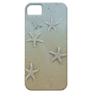 cover whit sea star