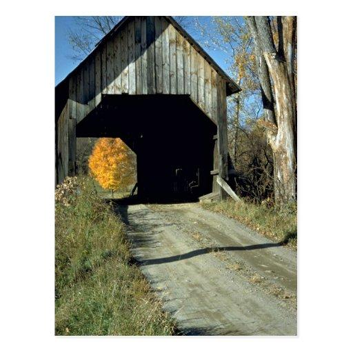 Covered bridge, Vermont Post Card