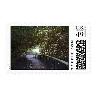 Covered Pathway Stamp