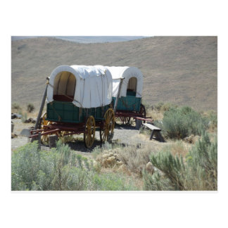 Covered Wagons Postcard