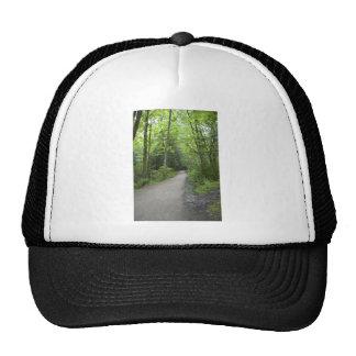CoveredPath052309 Trucker Hats