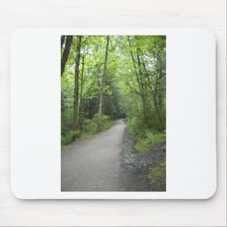 CoveredPath052309 Mouse Pad